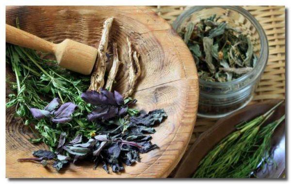Очищення легенів і бронхів в домашніх умовах: рецепти народної медицини