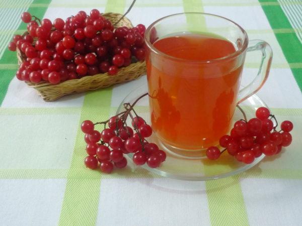 Калина з медом: зимова класика здоровя